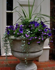 Landscaping Containers