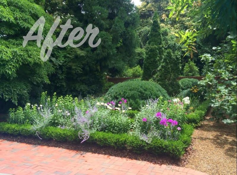 Garden Landscaping After